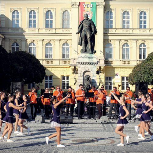 Festival dychoviek 2015 (4)