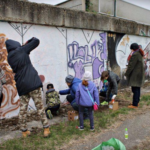 Graffity 2017 (7)