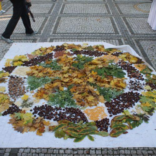 jesenný deň zdravia (106)