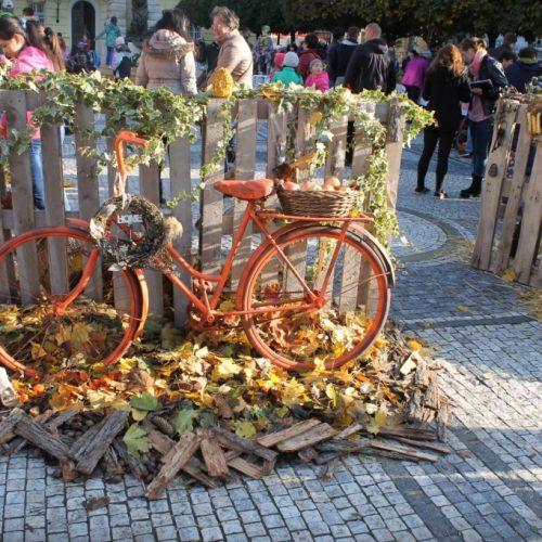 jesenný deň zdravia (15)