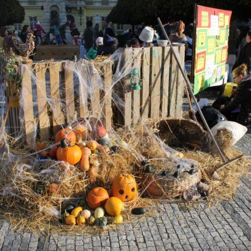 jesenný deň zdravia (20)